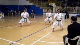 preview picture of video 'EISO - Squadra Femminile Kokusan Ryu Cremona (Coppa Italia Kata Febbraio 2015 - Acquapendente VT)'