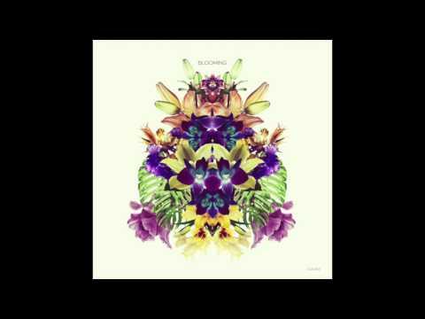 Konvex & The Shadow, Melokolektiv - Blooming feat  Craig Walker (Radio Edit)