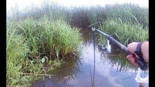 Рыбалка на озере в калужской области