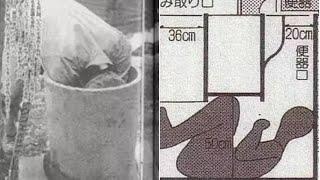 Vụ án mạng trong bồn cầu Nhật Bản: Nạn nhân qua đời trong tư thế kỳ lạ, cảnh sát đóng án