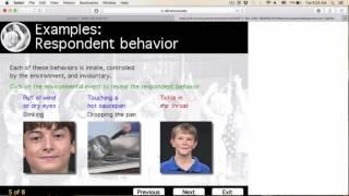 what is respondent behavior