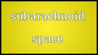 Subarachnoid space Meaning