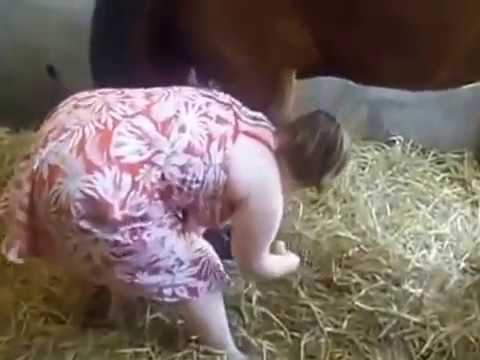 Pretty girl playing with horse