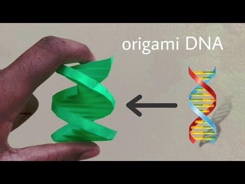 Dna Origami Structure Estructura Del Adn Origami