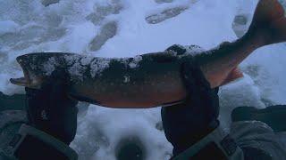 Как ловить в озерах на кольском полуострове