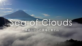 空撮 精進山からの雲海と富士山 / Sea of Clouds from Mount Shoji taken with a drone.