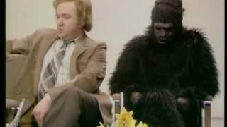 Not The Nine O'Clock News - Gerald the gorilla