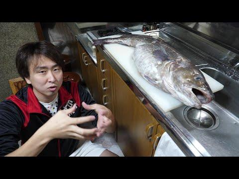 【奇跡】市場のはしっこに売ってたkg300円の激安マダラ。エサを食べてぱんぱんに膨れ上がってると思ったお腹の中からまさかの!!!