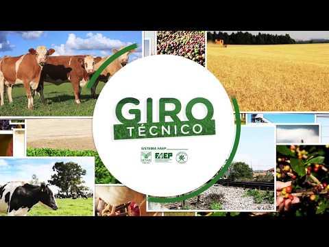 Preservação ambiental por produtores rurais