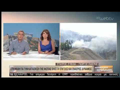 Συνεχίζεται η μάχη στην Εύβοια- «Σύμμαχος» η εξασθένηση των ανέμων | 14/08/2019 | ΕΡΤ