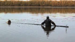 ловля рыбы на проводку на ракушку