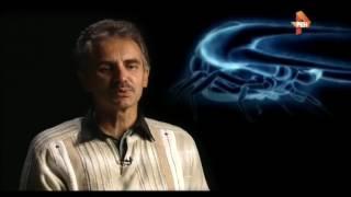 НА ВЕНЕРЕ ОБНАРУЖЕНЫ ГИГАНТСКИЕ НАСЕКОМЫЕ | документальные фильмы про космос смотреть онла