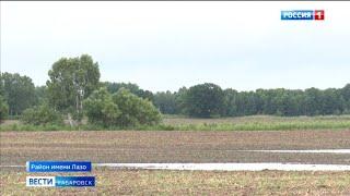 Многолетнюю проблему затопления полей в Хабаровском крае - будут исправлять