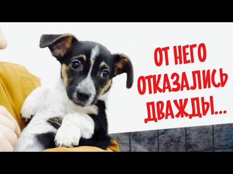 Video sesso russo nei boschi