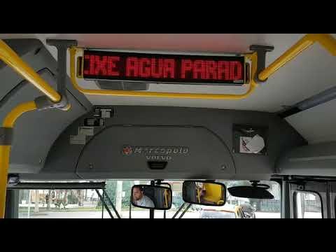 Campanha contra o mosquito da dengue nos ônibus metropolitanos de Curitiba