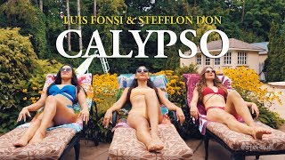 CALYPSO   LUIS FONSI, STEFFLON DON  (STEF WILLIAMS REGGAETON DANCE VIDEO)