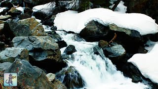 Winter Waterfall ~ Beautiful Relaxing Forest River Waterfall Nature Sounds • White Noise • 10 HOURS