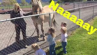 THE GIRLS MEET A REAL HORSE