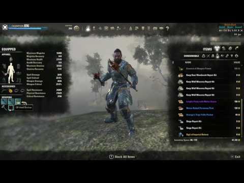 Pelinal's Hybrid Bruiser Wolf Build — Elder Scrolls Online