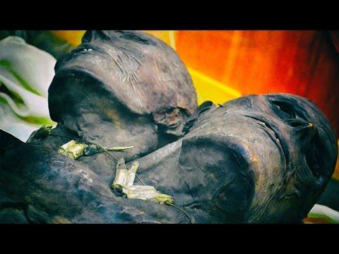 Kap Dwa, de twaalf voet lange, tweekoppige reus uit Patagonië