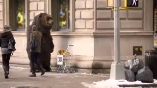 Angry bear on the street Fun by man