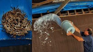 Old Man Life Hack for Hornets