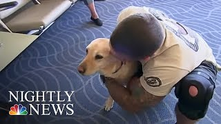 Meet The Woman Reuniting Vets With Their Retired Service Dogs   NBC Nightly News