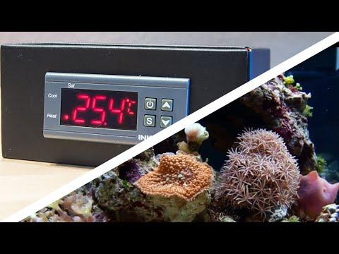 Günstige Temperatursteuerung / Kühlung für das Aquarium