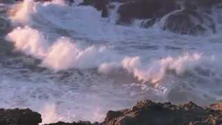 Море всегда будет ждать тебя