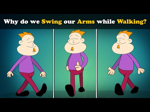 Why do we Swing our Arms while Walking?   #aumsum