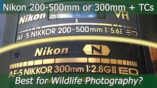 Nikon AF-S 300mm f/2.8G VR II + teleconverters vs. Nikon AF-S 200-500mm f/5.6E VR on the Z7?