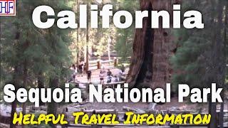 Sequoia National Park – California | Beautiful America Series – Travel Guide - Episode# 17