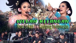 Wegah Kelangan Cover Duo PitWid New Sekar Gadung