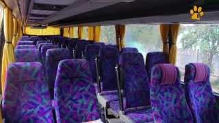 """Автобусные туры от туроператора """"КОТЭ"""" на автобусе со спальными местами!"""