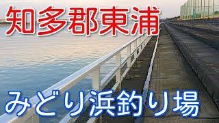 愛知釣り場衣浦大橋から近い「みどり浜緑地」の釣り場紹介!うなぎも狙えるよ~知多郡東浦町