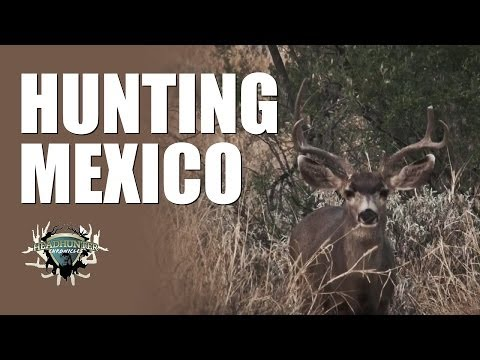 Headhunter Chronicles – Mexico