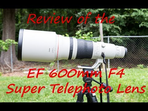 Review 600mm F4 Super Telephoto Lens