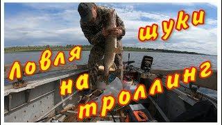 Рыбалка на верхней волге ловля рыбы в марий эл