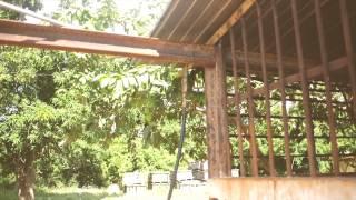 preview picture of video 'Visita del Representante de la FAO en Cuba al proyecto comunitario de San Felipe, Mayabeque'