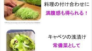 宝塚受験生のダイエット講座〜春野菜でデトックス④春キャベツ〜のサムネイル