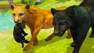 СИМУЛЯТОР ДИКОЙ КОШКИ #1 Родился котенок у пантеры развлекательное видео для детей  #КИД #ПУРУМЧАТА