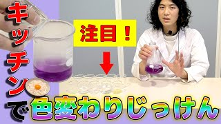 おうちでもできる!おもしろ実験工作 #5「キッチンで!色変わり実験」