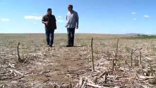 WaGrown Unknwon Stars S2E6: Columbia Valley Farms - Asparagus Farmer
