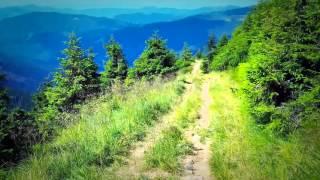 После просмотра этого видео вы захотите посетить горы Карпат! 1 минута 20 сек.!