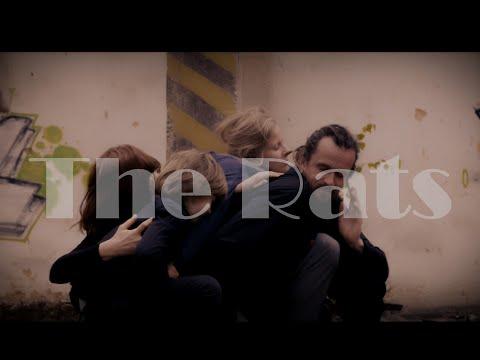 David Kovář - The Rats