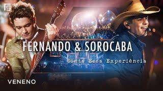 Fernando & Sorocaba - Veneno | DVD Sinta Essa Experiência