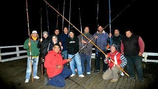 preview picture of video 'Concurso de Pesca - Muelle La Lucila del Mar (13 de mayo 2014)'