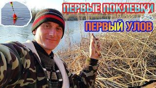Fion. ru форум земляков отчеты о рыбалке курганская область