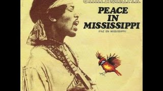 Peace in Mississippi at the Foxton Locks Festival 2015