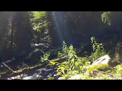Shumka river's rocks